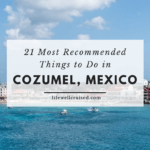 recommended things to do in cozumel
