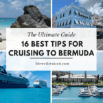16 best things to do in bermuda for cruisers