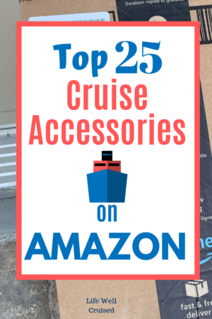Top 25 Cruise Accesories on Amazon