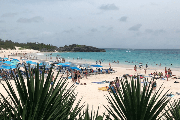 horseshoe beach bermuda