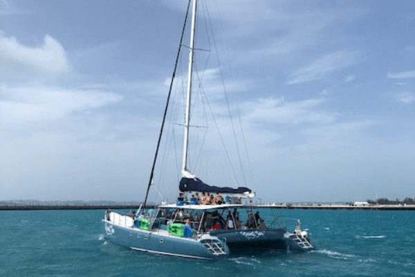 catamaran rising son cruises bermuda