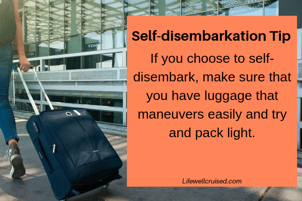 self disembarkation tips - luggage