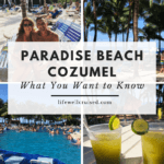 paradise beach cozumel review