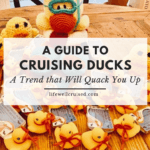 cruising ducks - cruising trend that will quack you up