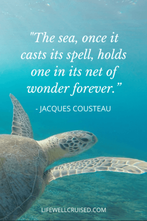 The sea, once it casts its spell, holds one in its net of wonder forever - Ocean Quote PIN